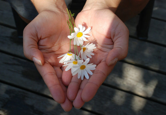 Hands holding flowers. (Photo: GLady/Pixabay)