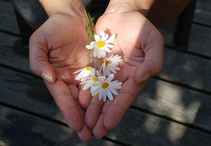 Hands holding flowers. (Photo: GLady/Pixabay)