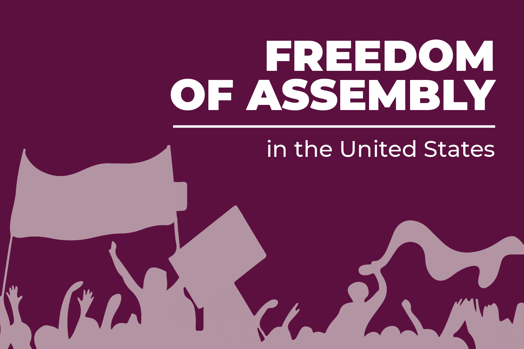 ICNL's work on issues impacting Freedom of Assembly in the U.S.